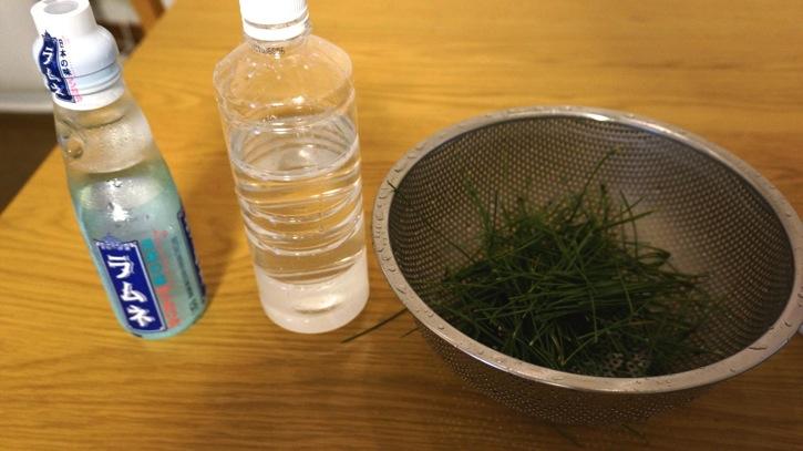 松と水でサイダーが出来るってよ 実際に作って飲んでみた