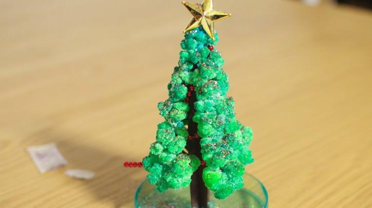 12時間でみるみる育つ「マジッククリスマスツリー」