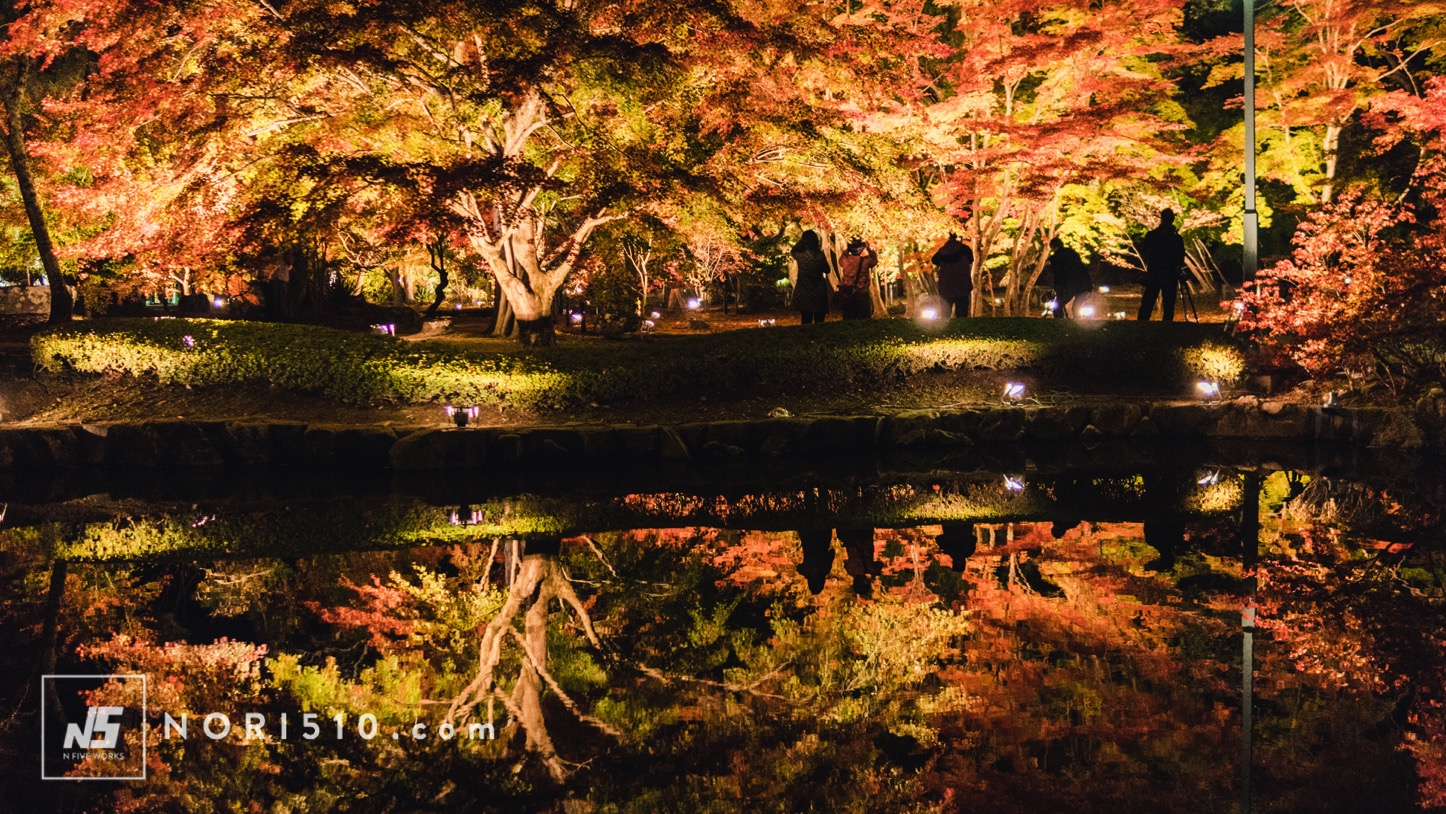 逆さ紅葉が綺麗だった曽木公園のライトアップ【岐阜土岐小旅行】