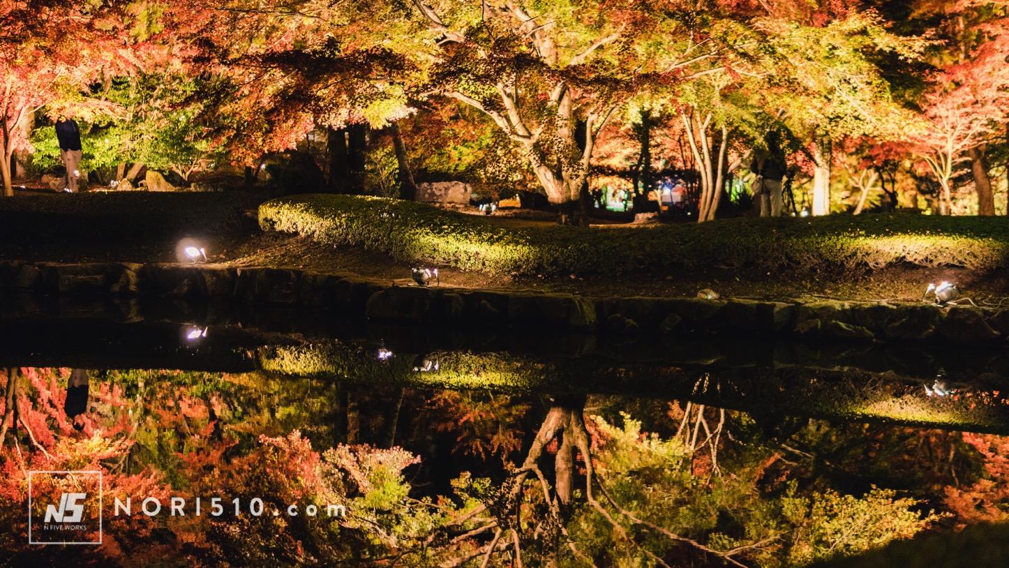 池に反射する紅葉