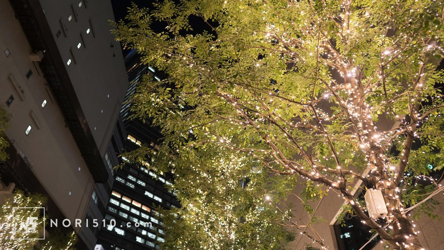 名駅ライトアップ