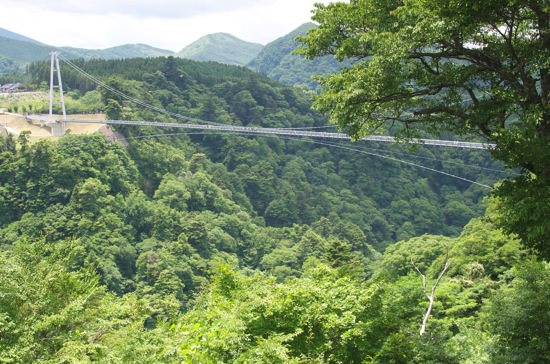 日本一の吊り橋「九重夢大吊り橋」に行ってきた