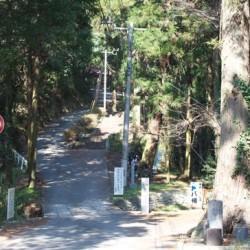 お遍路旅行記 息切れ必死の333段の階段の先にある寺「10番札所 切幡寺」