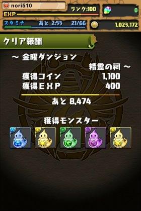IMG 6461